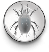 Red poultry mite icon
